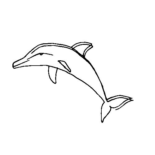 елементи-22